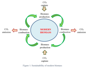 Pros and Cons of Biomass